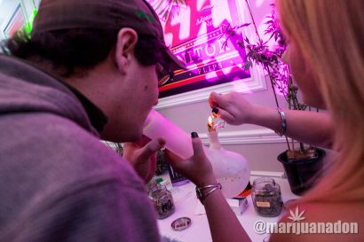 Marijuana-Mansion_IMG_0188