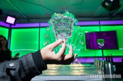 Marijuana-Mansion_IMG_0254
